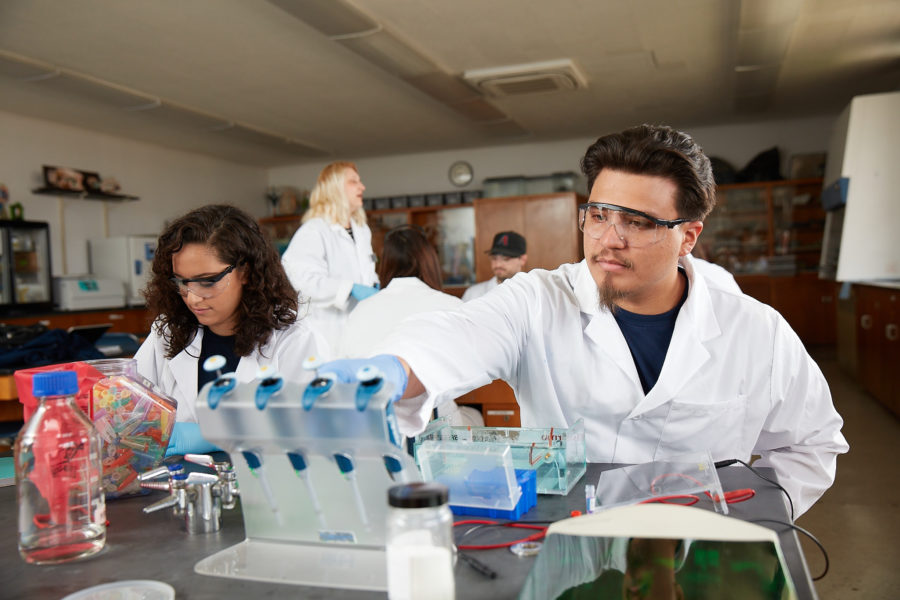 Students working in a lab on campus